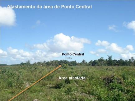Fórum Florestal Baiano debate acordo de afastamento de plantios de núcleos urbanos