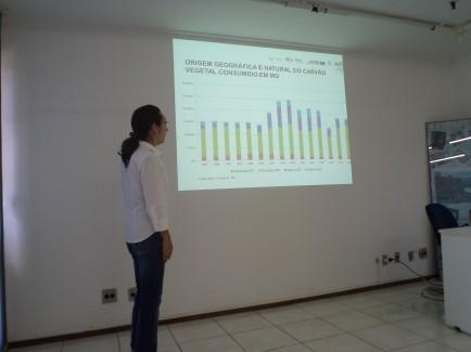 Em 2012 Fórum Florestal Mineiro reviu seu Plano Estratégico