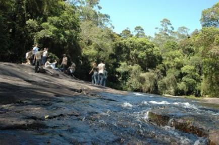 XVII Encontro do Fórum Florestal São Paulo