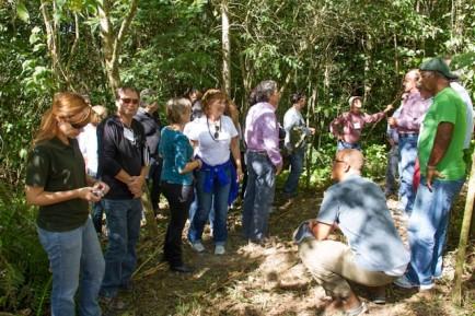 Diálogo participará do Congresso Florestal Argentino e Latinoamericano