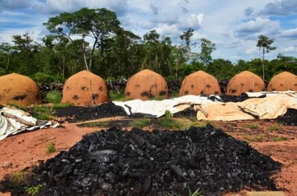 Produção de carvão vegetal na pauta do Diálogo em 2014