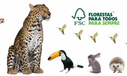 Fórum Florestal PR e SC contribuirá com a revisão dos padrões nacionais de manejo florestal do FSC