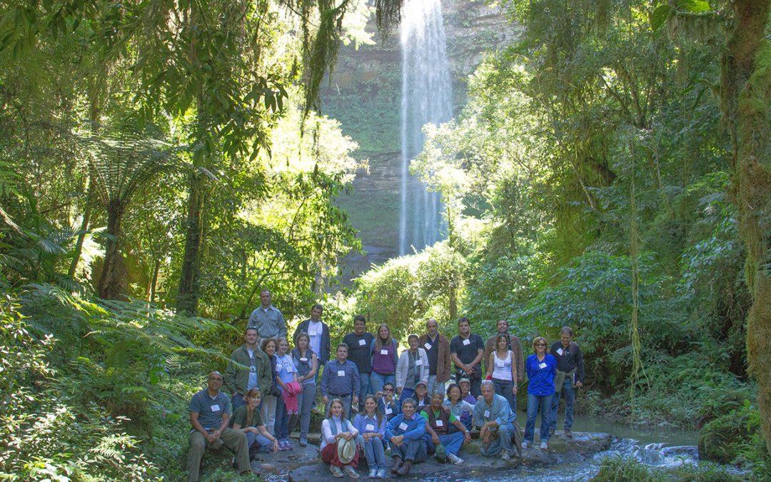 VIII Encontro Nacional do Diálogo Florestal é realizado em Atalanta