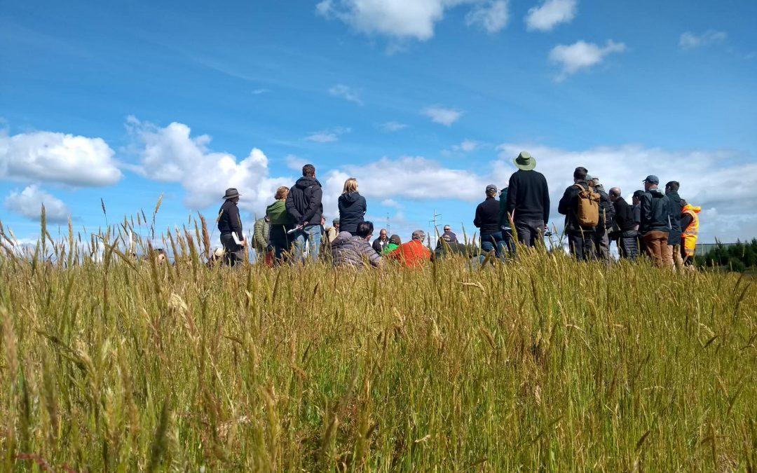 Plantações Florestais na Paisagem: diálogo de campo realizado na Nova Zelândia