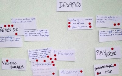 Diálogo Florestal divulga resumo sobre o primeiro Diálogo do Uso do Solo na Amazônia