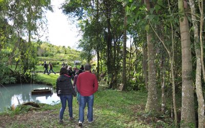 Diálogo Florestal realiza segunda etapa da Oficina sobre Diálogo do Uso do Solo