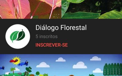 Canal do YouTube do Diálogo Florestal é lançado