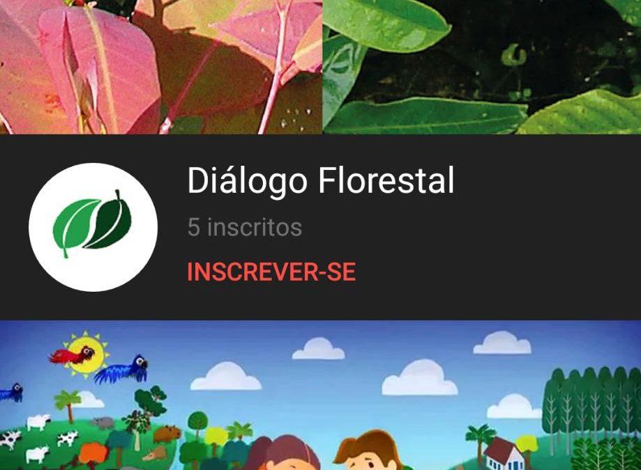 Canal do YouTube do Diálogo Florestal é lançado