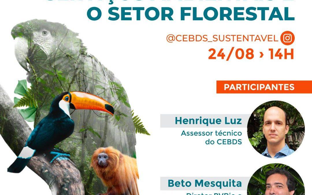 CEBDS e Diálogo Florestal realizam live sobre Pagamento por Serviços Ambientais