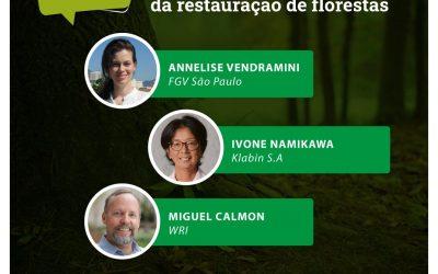 Oportunidades econômicas da restauração de florestas é tema da live da série 'Diálogos Florestais'