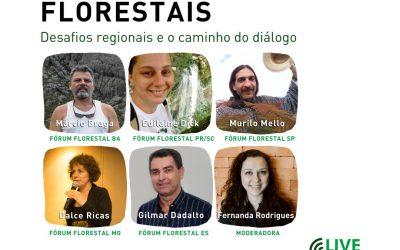 Fóruns Florestais do Diálogo estreiam série de lives