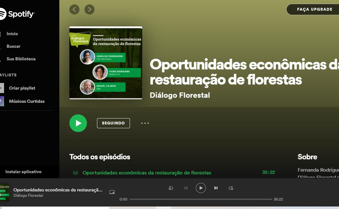 Oportunidades econômicas da restauração florestal
