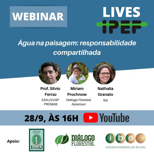 IPEF e Diálogo Florestal realizam live sobre água na paisagem e responsabilidade compartilhada