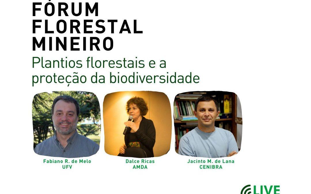 Live do FF Mineiro abordará plantios florestais e sua relação com a proteção da biodiversidade