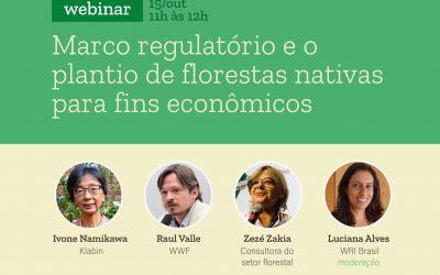 Marco regulatório e o plantio de florestas nativas para fins econômicos é tema de webinar