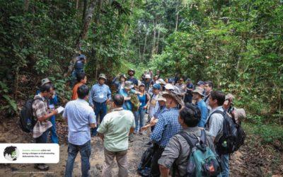Anúncio do 20º aniversário do The Forests Dialogue