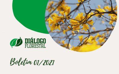 Inscreva-se para receber as notícias do Diálogo Florestal