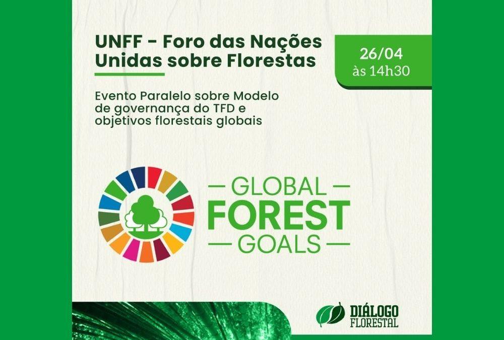 Diálogo Florestal participa de evento paralelo ao Fórum das Nações Unidas sobre Florestas