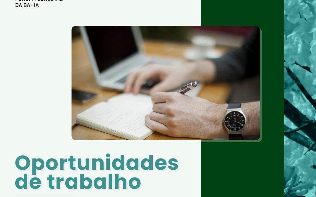 Fórum Florestal da Bahia lança termos de referência para três oportunidades de trabalho